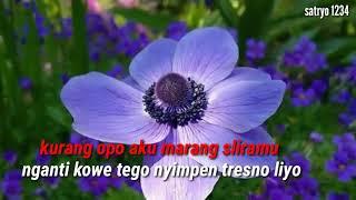 Tresno nyang wong liyo story wa