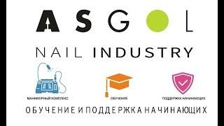 ASGOL PRO - обучение и поддержка начинающих