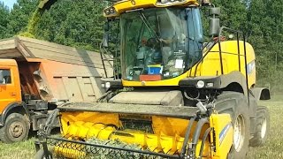 Silage 2016| Live| New Holland FR500 chopping grain-haylage| Комбайн FR500 заготовка кормов 2016|