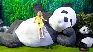 Stacy brinca no museu do urso de pelúcia infantil