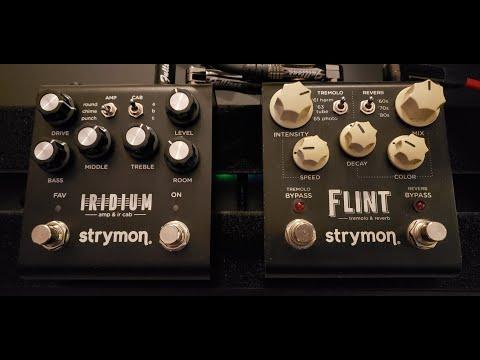 Strymon Flint + Iridium