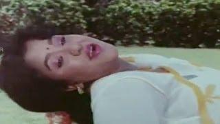 Jayammu Nichayammura    Ayyayo Ayyayo Video Song    Rajendraprasad, Avanthi