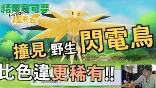 精靈寶可夢 Let's Go!皮卡丘 | 比色違還稀有!? 遇見野生閃電鳥!!  | 李小忍Sean Li