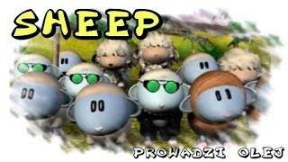 Sheep game #1 - Buszując w zbożu
