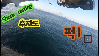 #쇼어캐스팅 ㅣ던지면 퍽! 던지면 퍽! 전생에 깡패들이었나ㅣ 추자도 둘째날 오전 두번째 영상 ㅣ #shorejiggjing #제주도쇼어지깅 #지깅낚시
