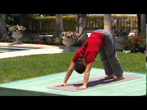Hatha & Flow Yoga for Beginners