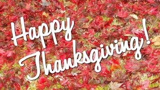 День благодарения! happy thanksgiving! Научи меня Боже