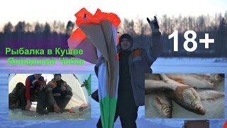 Рибалка в Кушве - Січневий Чебак 18 +