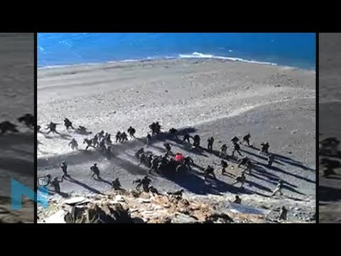On Cam: This is how Chinese troops attack Indian army in Ladakh
