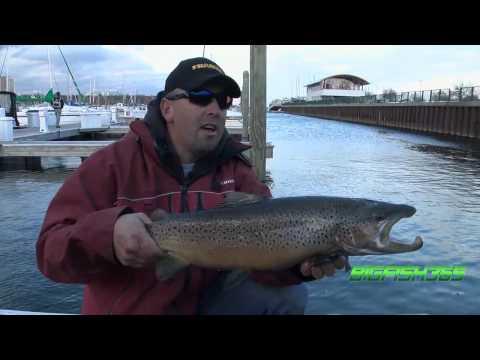 Episode 6- Monster-Huge 27 Lb Brown Trout