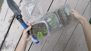 Mini Greenhouses Episode 1 Sam of all Trades
