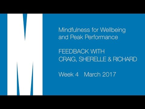 Feedback from Craig, Sherelle and Richard - Week 4 - Mar 2017