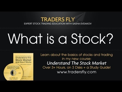 What is a Stock: Beginners Guide to Investing