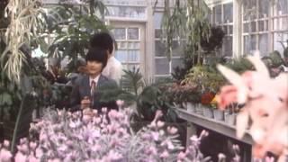 時をかける少女  / Toki wo kakeru shoujo (1983) 時をかける少女 動画 27