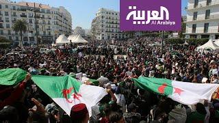 لماذا اتخذ البرلمان الأوروبي هذا الموقف من الحراك الجزائري؟