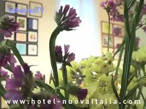 Hotel Nuova Italia Florence - 2 Star Hotels In Florence