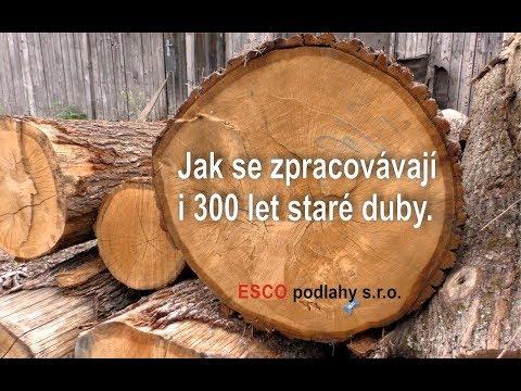 Jak se zpracovávají dubové kmeny pro výrobu dřevěných podlah ESCO