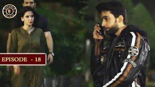 Cheekh Episode 18 | Top Pakistani Drama