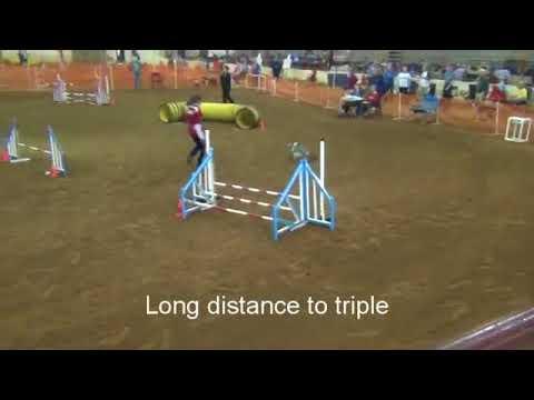 5 - Cheer Jumping Struggles