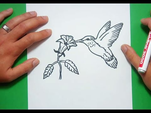 Como dibujar un colibri paso a paso | How to draw a hummingbird ...