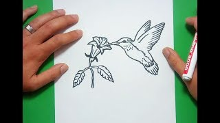 Como dibujar un colibri paso a paso | How to draw a hummingbird