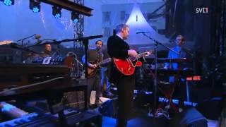 Lloyd Cole-   Period Piece (Live Sommarkväll 2013)