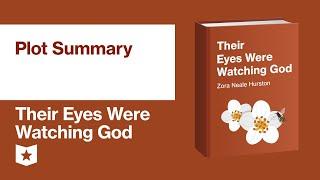 Their Eyes Were Watching God by Zora Neale Hurston | Plot Summary