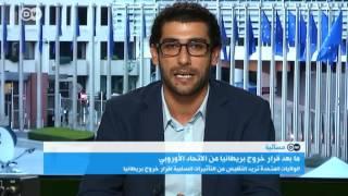 وسيم إبراهيم : على الاتحاد الأوروبي إقناع كامرون للتقدم رسميا بطلب الخروج!
