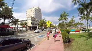 Miami South Beach Ocean Drive 360 Video Florida Heat Dolphins