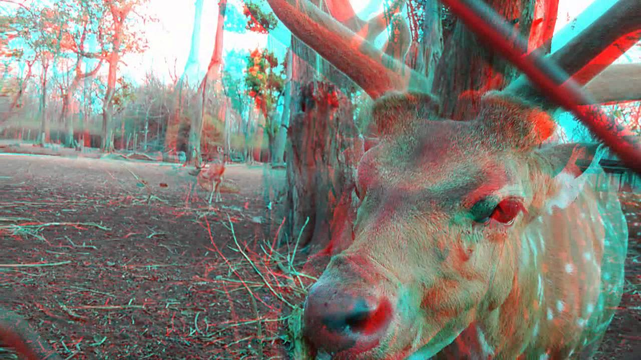 Anaglyph pictures Nude Photos 74