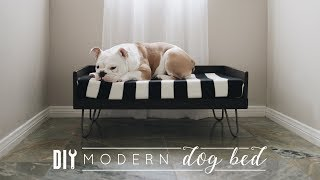 DIY Modern Dog Bed