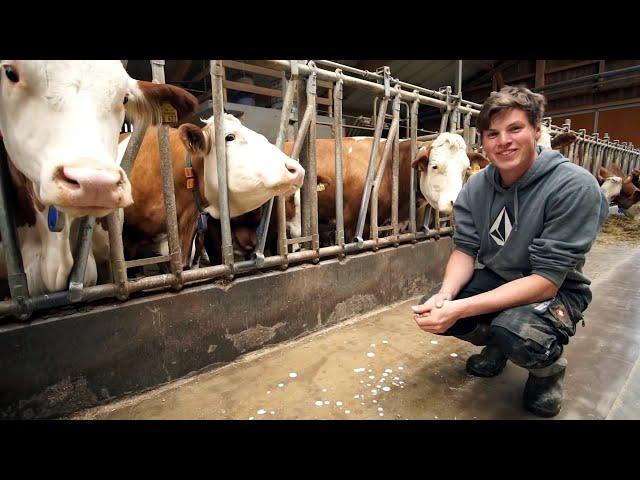 Junge Landwirte - Mein Leben auf dem Bauernhof