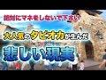 タピオカの人気が生んだ悲しい現実  /  東京ディズニーシー