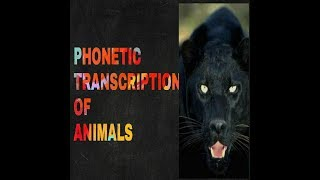 PHONETIC TRANSCRIPTION OF ANIMALS