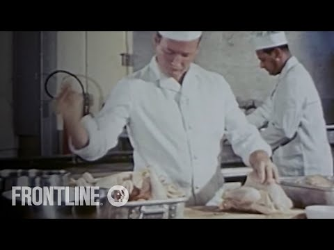 Is Your Chicken Safe? | FRONTLINE