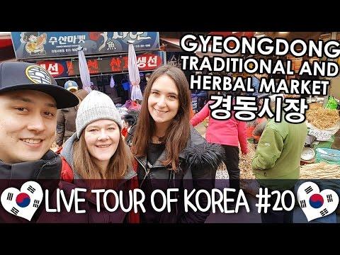 Gyeongdong Traditional & Herbal Market 경동시장 - 🇰🇷 LIVE TOUR OF KOREA #20