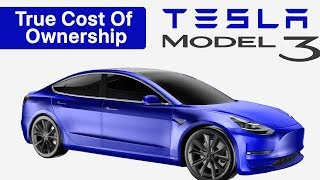 What is the TRUE Cost of Owning a Tesla Model 3? We Compare to the Honda Civic & BMW 3 Series