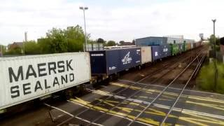 Southampton Level Crossing 02/06/2016 (5, misuse!)