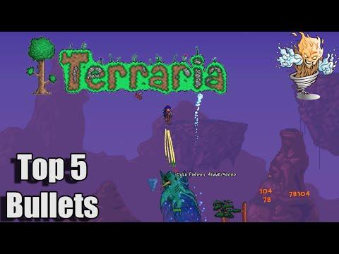 terraria how to get arms dealer