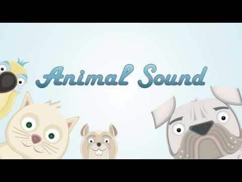 Animal Sound App