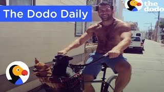 Guy Can't Stop Adopting Dogs: Best Animal Videos Today | The Dodo Daily Ep.6