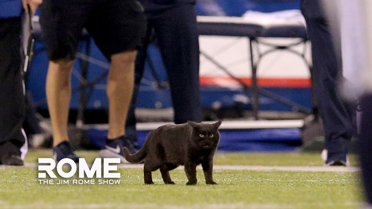 Don T Blame The Black Cat For The Giants Loss The Jim Rome Show
