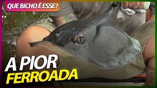 ESSA SIM É A PIOR FERROADA DO MUNDO! | RICHARD RASMUSSEN
