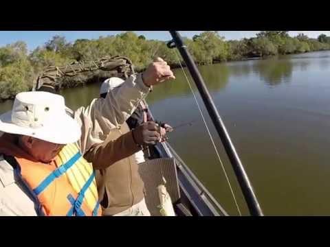 Kafue River, Zambia Fishing Trip