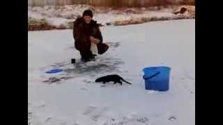 Приколы на рыбалке, зима