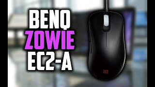 BenQ Zowie EC2-A Review - The Best FPS Gaming Mouse Out There | 10BestOnes