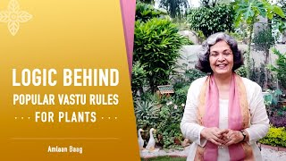 Logic Behind Popular Vastu Rules For Plants | वास्तु के मुताबिक पौधे लगाएं - क्यों?