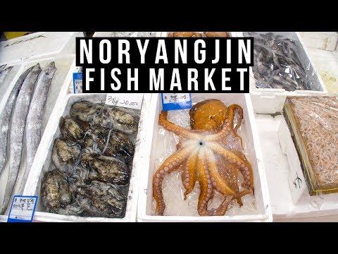 Noryangjin Fish Market In Seoul - Vlog #023