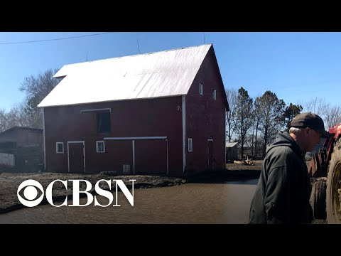 Flood damage to Midwest farmland and livestock could be in the billions