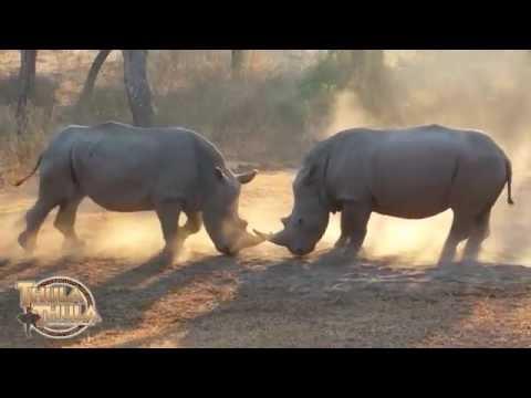 Thula Thula Private Game Reserve Empangeni KwaZulu-Natal South Africa